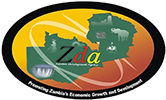 Zambia Development Agency (ZDA)